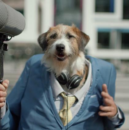 Channel 4 : Underdog